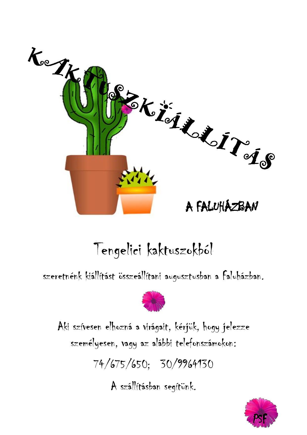Kaktuszkiállítás