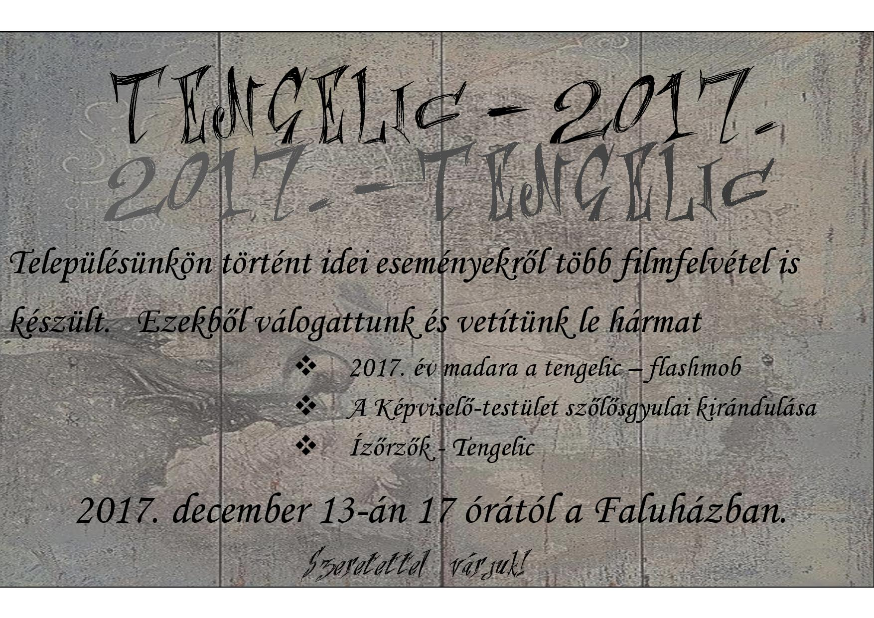 tengelic-2017