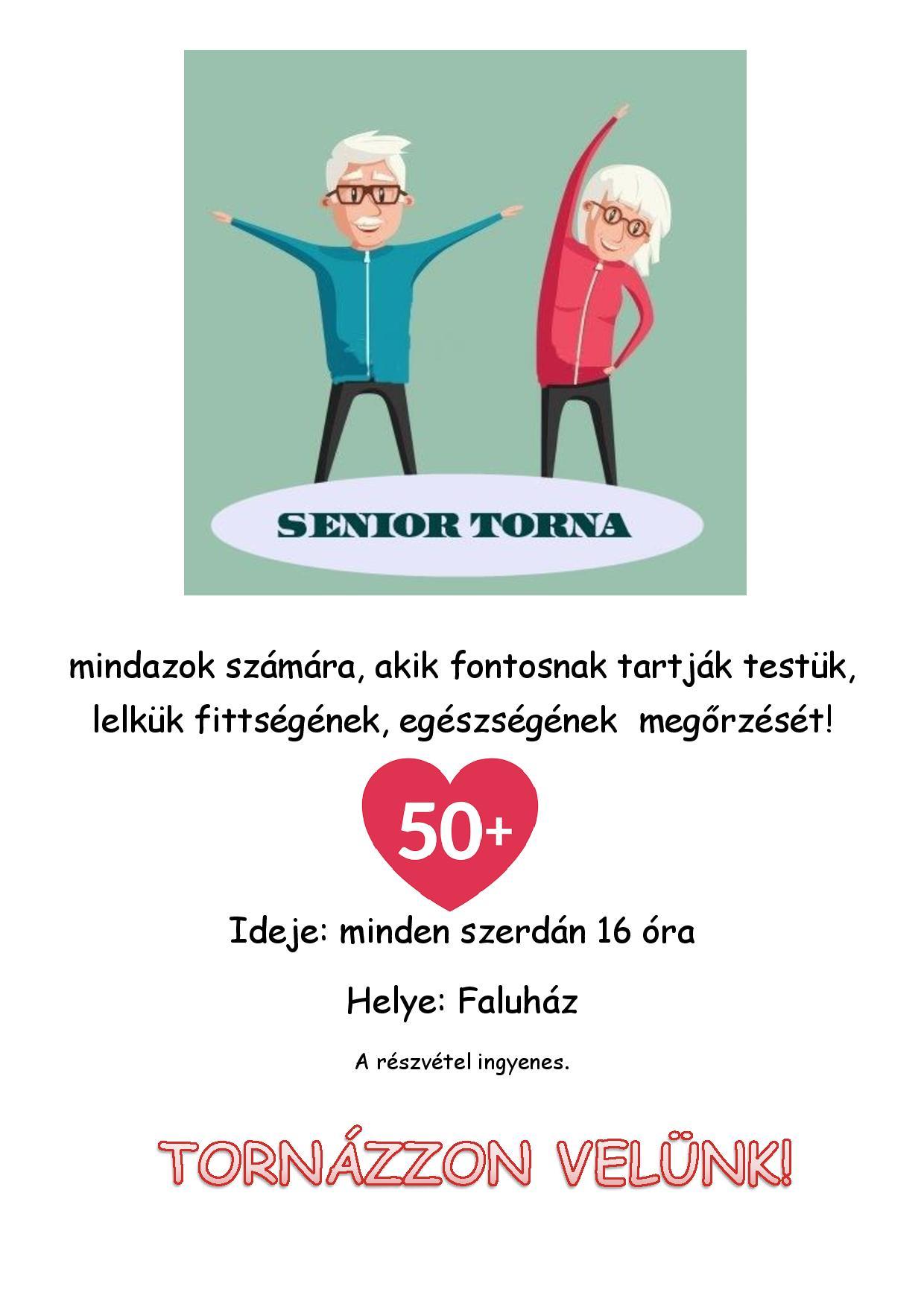 Senior-torna